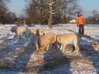 20-12-2009schnee-140