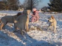 20-12-2009schnee-144